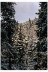 Снегопад в Присаянье